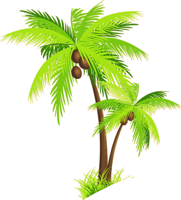 Palm_Tree_with_Coconuts